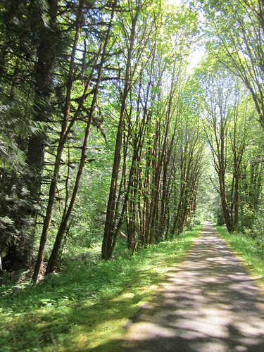 Banks-Vernonia Trail