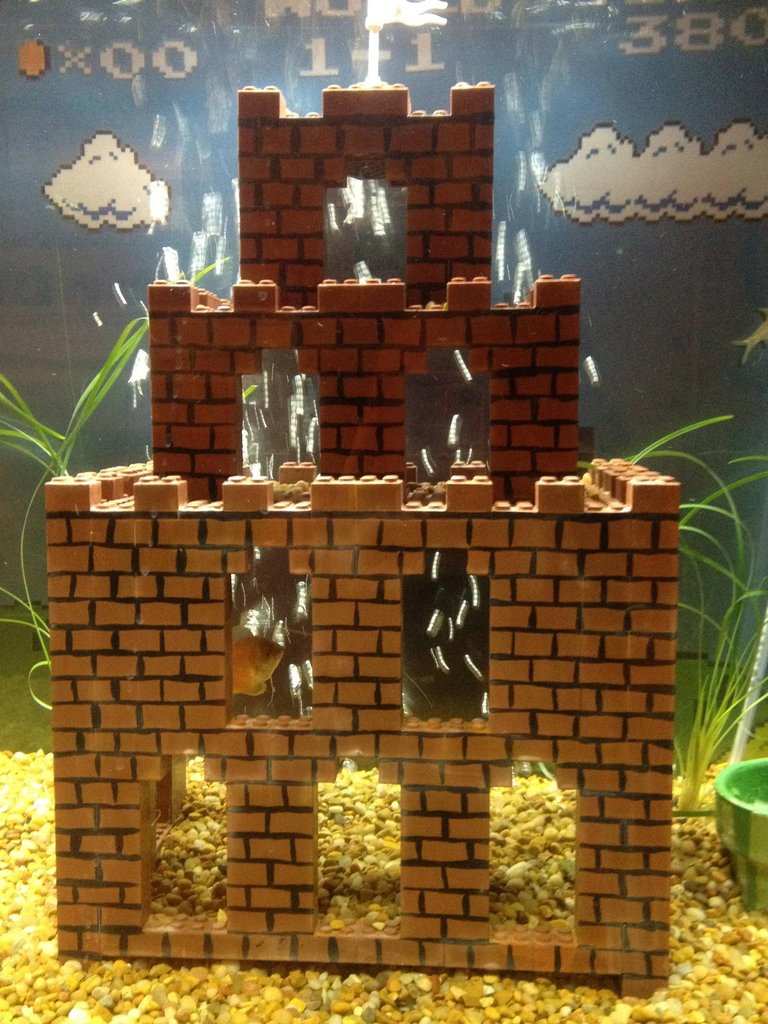 With you super mario fish tank decorations words