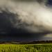 Regenbogen - Rainbow by Daniel Klitzsch