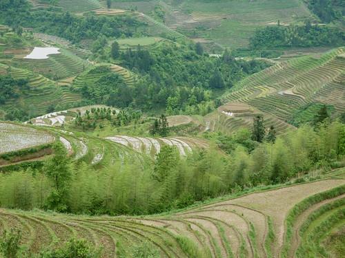 C-Guangxi-Dazhai-Descente (1)