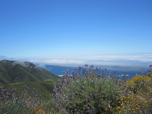 Rocky Ridge Trail in Garrapata State Park, Big Sur