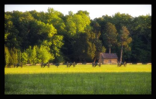 battleofshiloh shilohnationalmilitarypark wmansegeorge wmansegeorgecabin cwt1862 150thshiloh shiloh150th