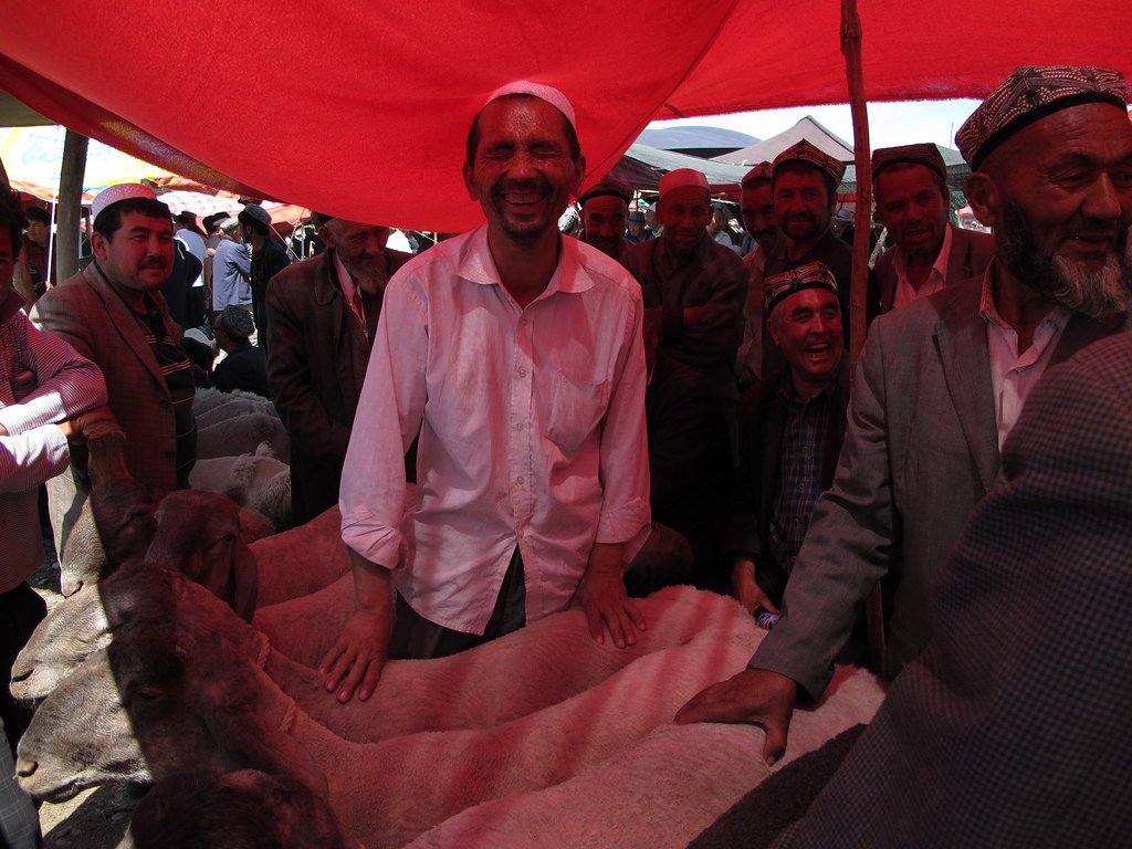 Compravenda d'ovelles al Mercat del bestiar de Kashgar (Xinjiang, Xina)