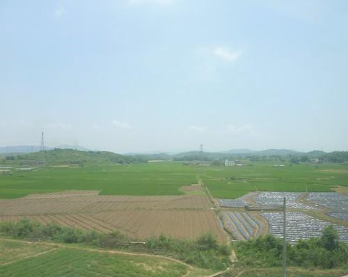 C-Changsha-Guangzhou-train (78)