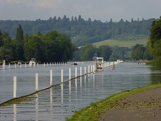 The Thames, laid out for the regatta