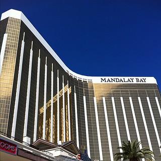 Livingaftermidnite - Insta-Vegas