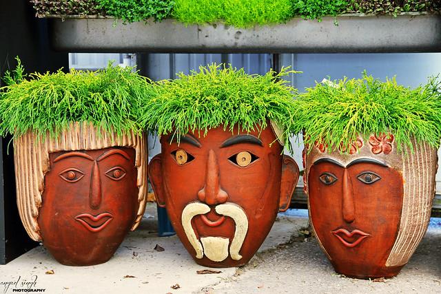 Creative Plant Pots  Flickr - Photo Sharing!