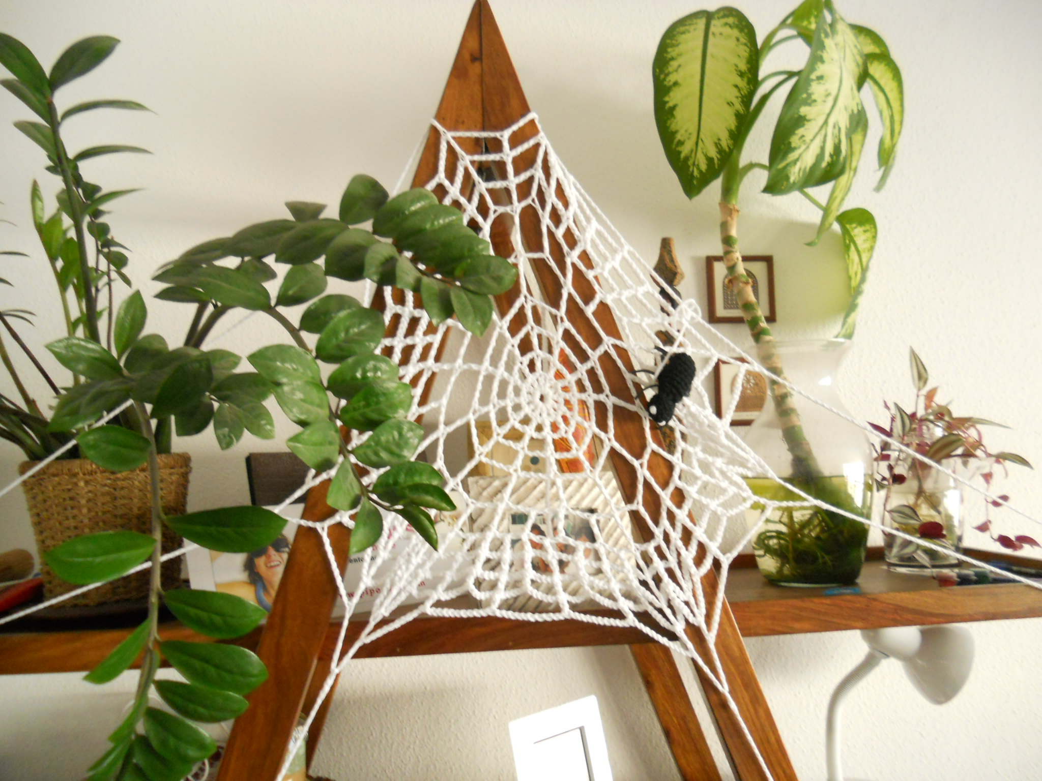 La tela de araña de Zaira