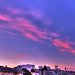 SF Skyline Sunset Panorama