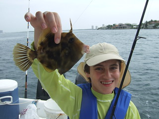 Michael catches a filefish