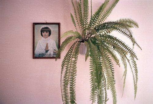 Jessica Backhaus lrg-4990-pink_beata