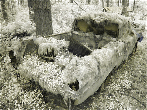 Moss covered truck returning to the elements, Infrared
