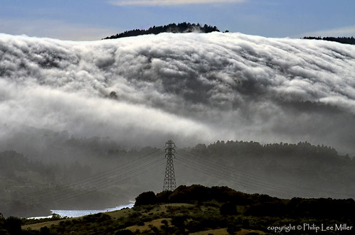 trees nature water fog landscape powerlines sanandreasfault marinelayer sanmateocounty portola crystalspringsreservoir weatherpatterns brightsunnydays d7000 galleryoffantasticshots