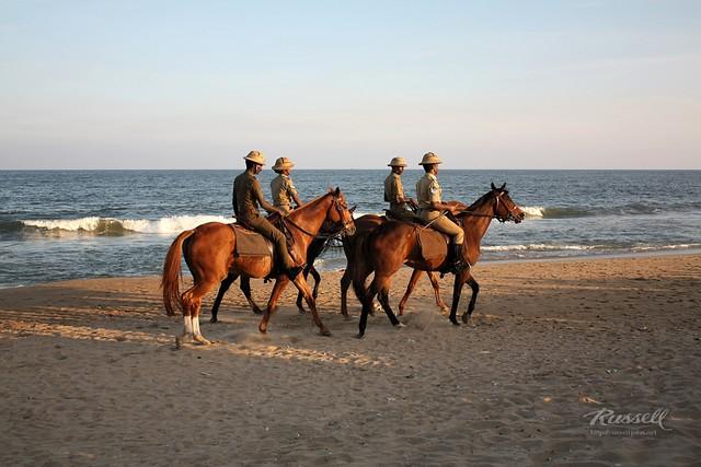 Horseback Patrol II