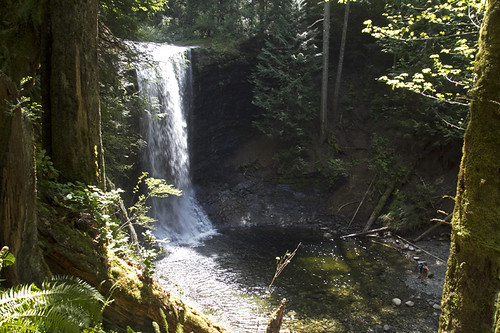 ammonite falls