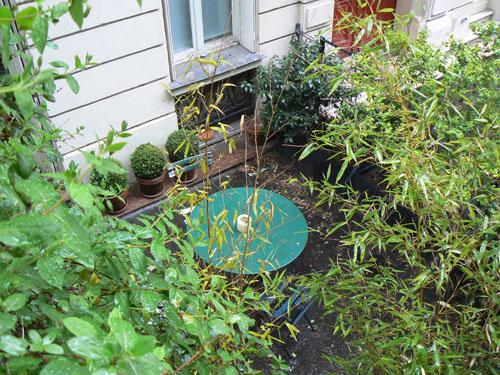 petit jardin Montmartre.jpg