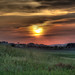 <p>The sunset while heading back from a visit to Sant'Antimo Abbey in Tuscany.</p>