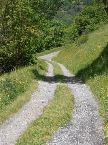 LA MATURE (chemin) 165