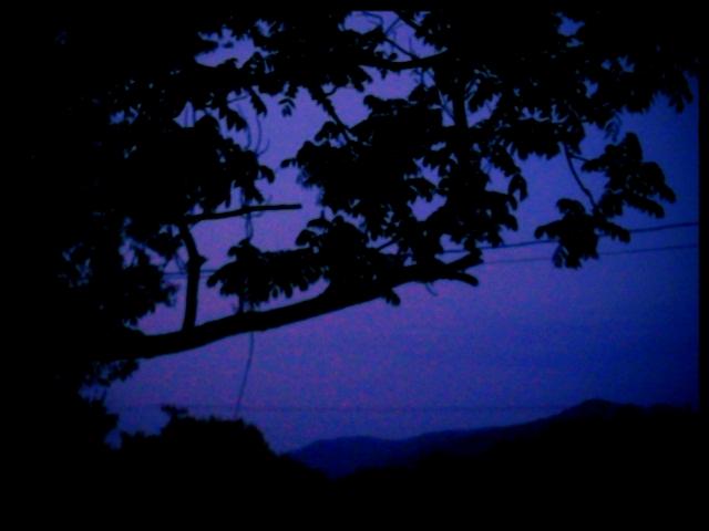 2012-05-25 Night comes
