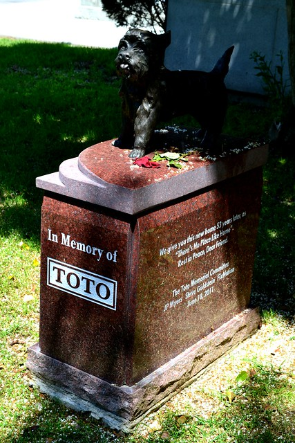Terry aka Toto from Wizard of Oz