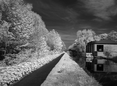 Dreamed a dream by the old canal (INFRARED)