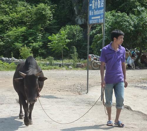 C-Guangxi-Yangshuo-Tour-Yulong (53)