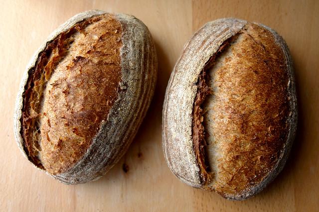 paine cu 3 maiele 0104