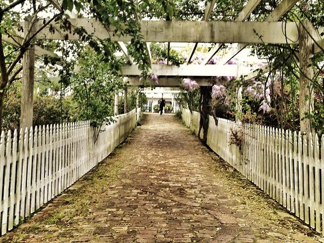 Stone Walkway Roche Harbor