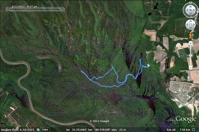 Sparkleberry Route 6-2-2012