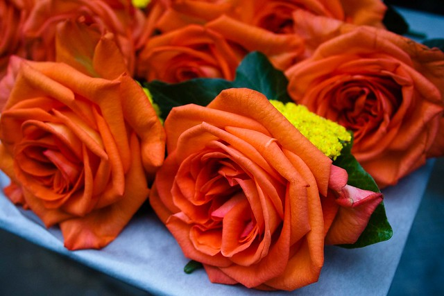 Groomsman's Orange Roses