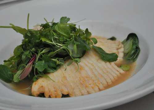 Hyatt-Skate-with-Cilantro