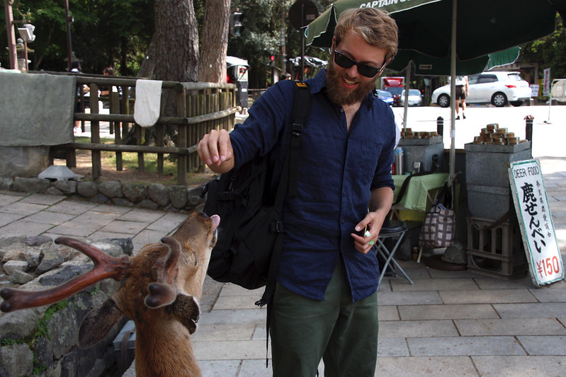 feeding deer in Nara