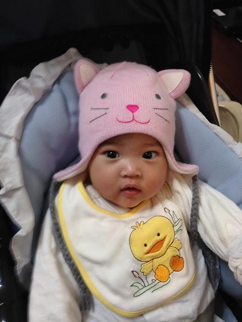 把拔買給我的賣萌用可愛小貓帽帽!