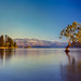 Lake Wanaka by alasdair.matthews