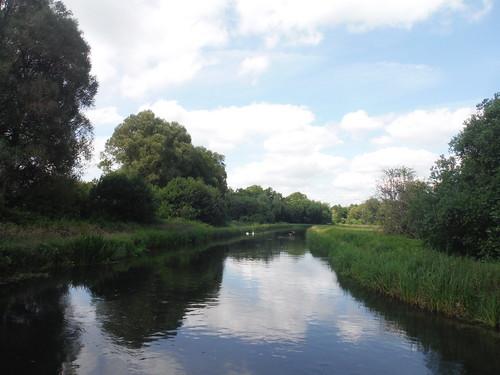 Park Stream, Test Meadows