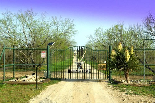 View of Entrance to Ranch