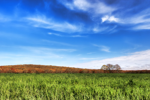 Pardon Gray Land Trust Preserve by mike_dooley via I {heart} Rhody