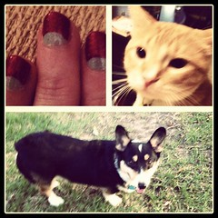 Apr 27, 2012 - nail party with the girls  and Calvin, after some frisbee with Nappy