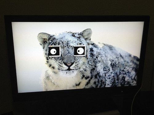 Snow Leopard TV
