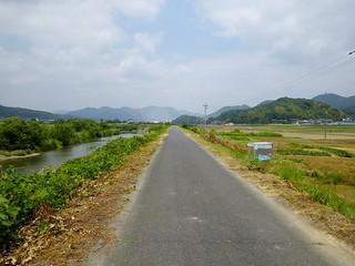 小田川土手沿い