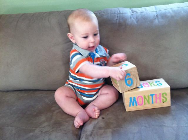 6 months-5