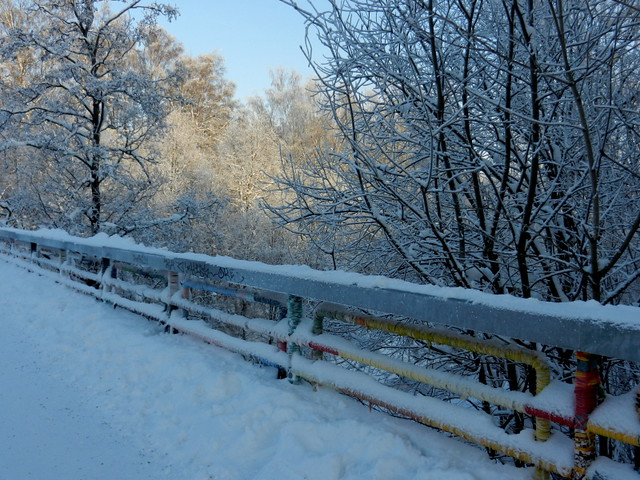 Winter_11_2012