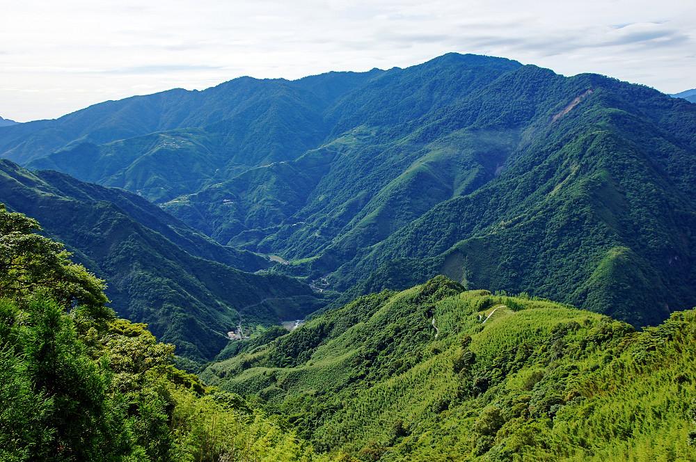 巨木群,與往拉拉山的路上-004