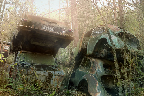 The car graveyard :