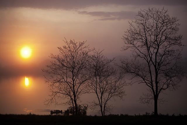 0514 Rising sun - 1
