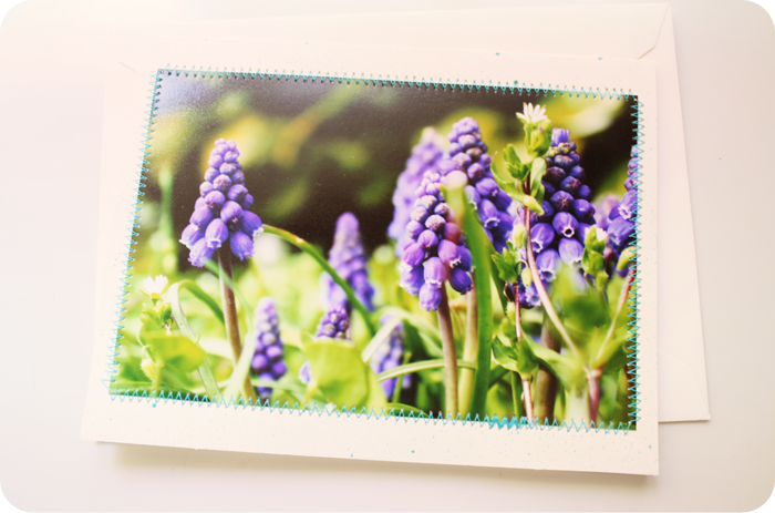 {note card} bluebells