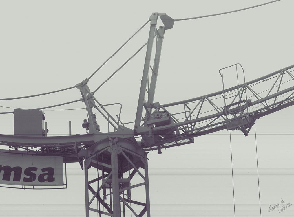 crane_014_crop