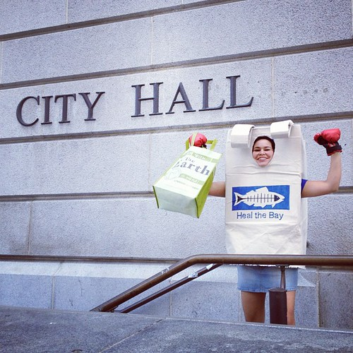 The Reusable Bag prevails! L.A. votes to ban plastic bags! #banthebagla