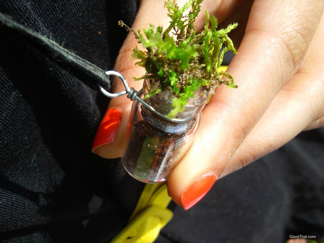 DIY Living Terrarium Pendent Necklace how-to gift idea