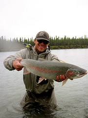 Fly fishing guide Anthony Carruesco with a big beautiful Alaska Rainbow